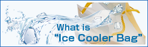 "What is ""ice cooler bag""?"
